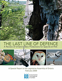 2009 Special Report: The Last Line of Defence