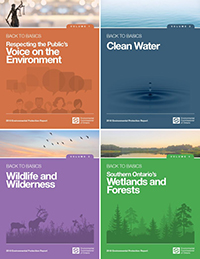 2018 Annual Environmental Protection Report