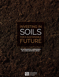 2013: Investing in Soils for a Sustainable Future